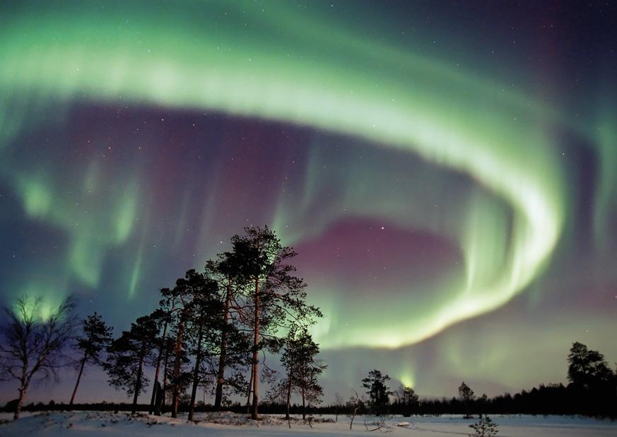 Fernweh_Nordic-Holidays_20121031-Nordlicht---MEK_web