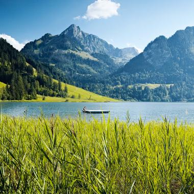 Schwarzsee_380x380