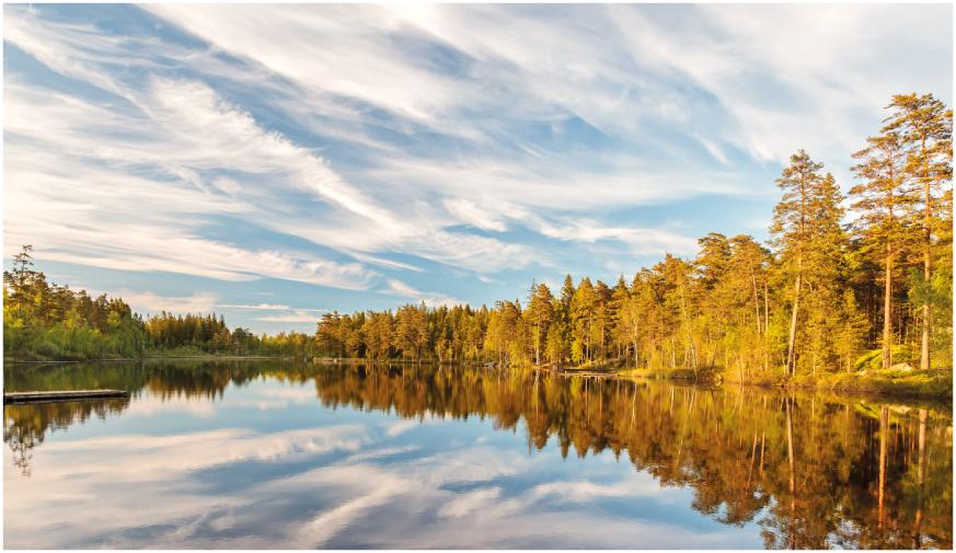 Schweden02_width873