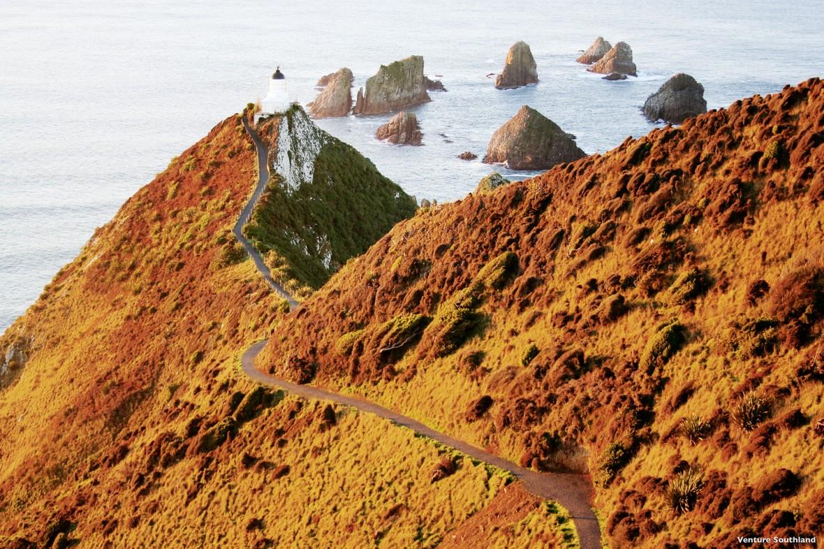 fernweh_nova-tours_L546-Nugget-Point-Southland-Venture-Southland_web